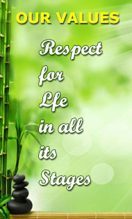 Respect for life in all its stages